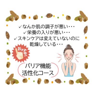 秋の不調を整えて健やかな肌へ❤ - プライベートサロン MISUZU(ミスズ) - ブログ